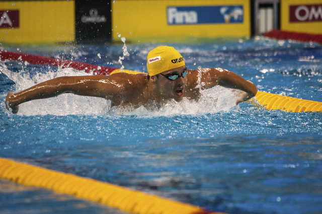 FINA World Cup 2016 terug in 25m-bad